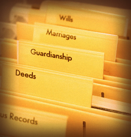 guardianship training