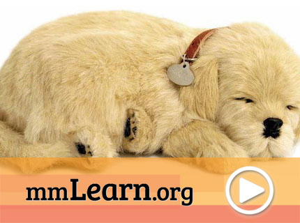 Activities for Someone with Dementia Using Breathing Pets